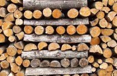 Где выбрать дрова?