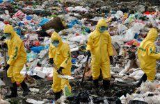 Как вывозят биологические отходы?